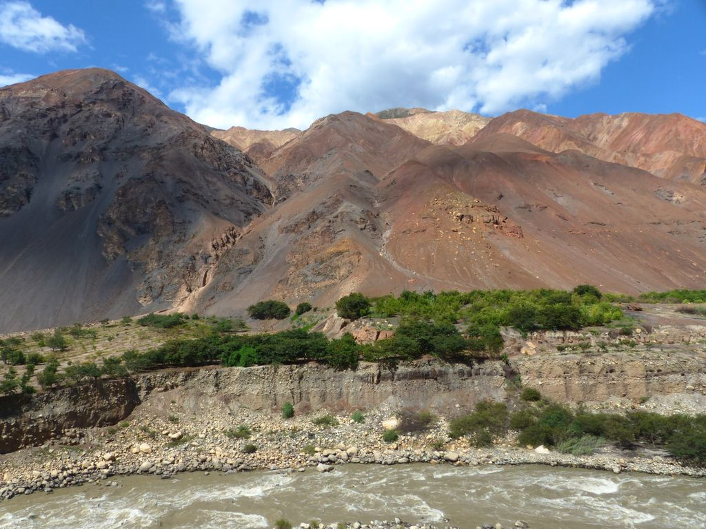 Manguiers sur montagnes colorées