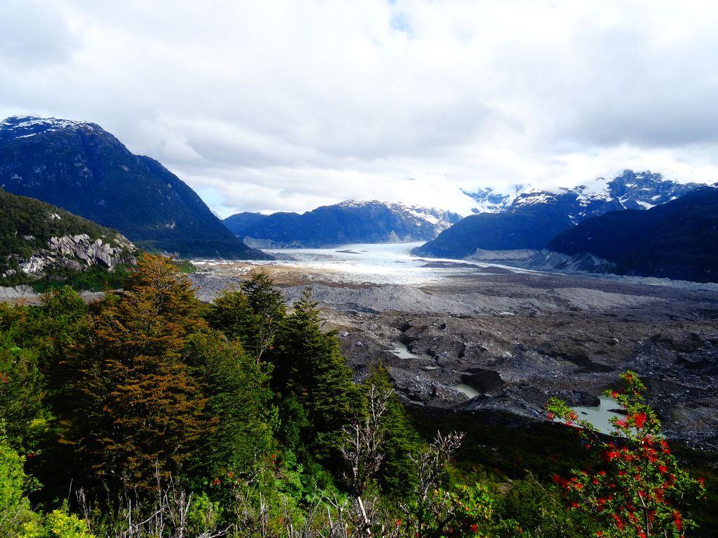 Végétation aux couleurs automnales face au glacier