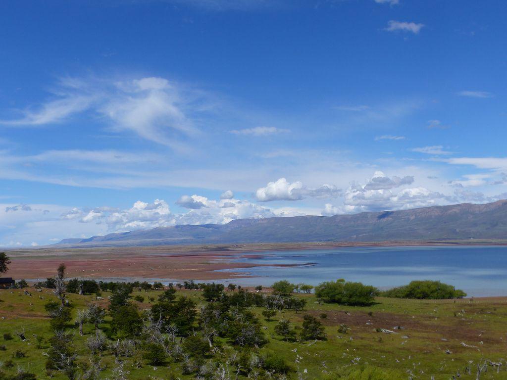 Le long du lago Argentino