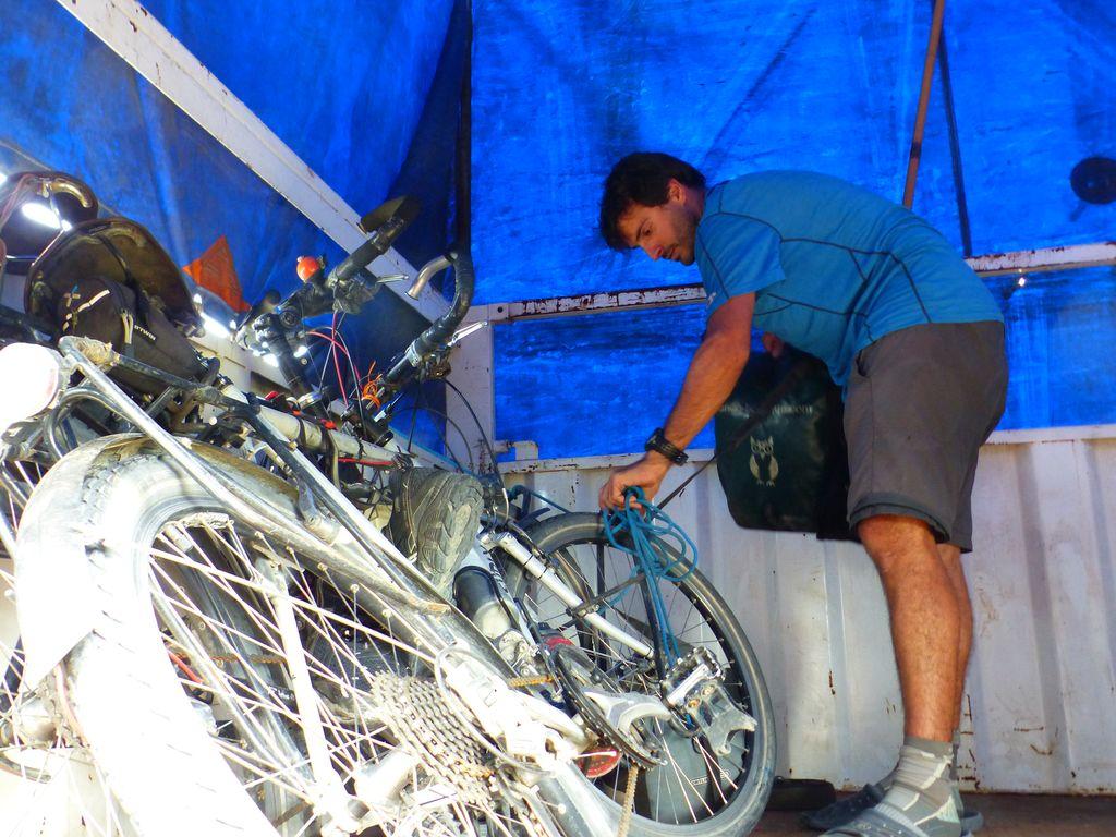 Vélos bien arrimés dans la remorque...